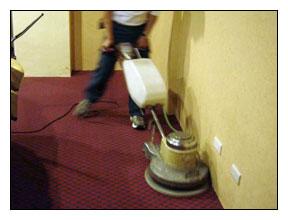 地毯乾洗作業流程-乾洗粉灑在地毯上後,使用棉布墊拋抹地毯