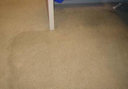 清潔後的地毯(水份尚未完全乾燥)